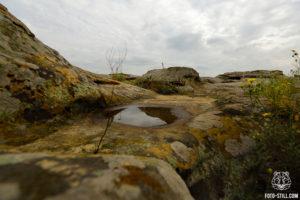 Каменная могила, фото, запорожье, мелитополь, место силы, камень с водой,